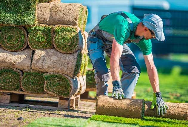 Gardener and  Landscape Contractors  Thurgoona